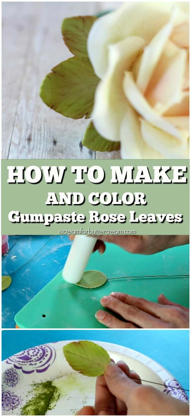 How to Make and Color Gumpaste Rose Leaves Pinterest Graphic