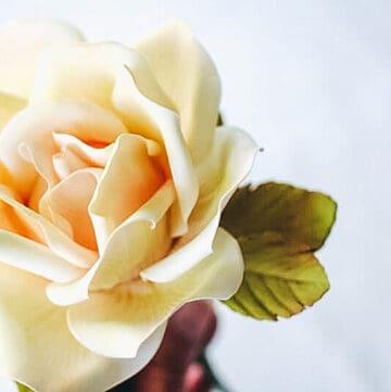gumpaste rose leaves featured image