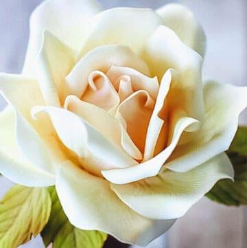 make a gumpaste rose featured image