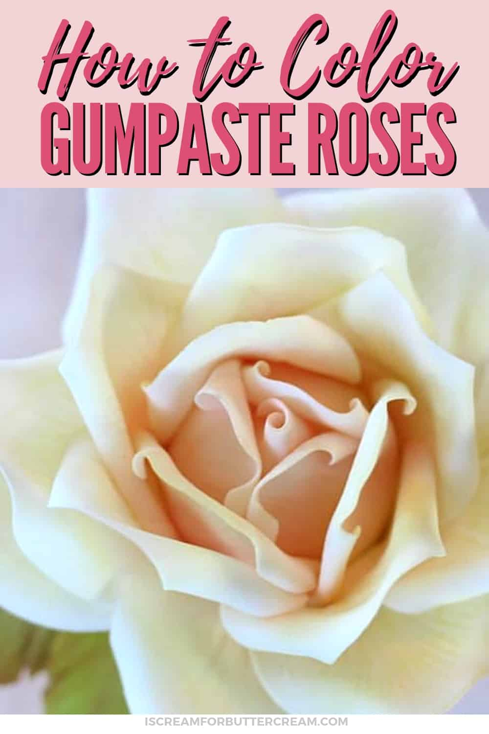 How to Color a large gumpaste rose new pin graphic 1