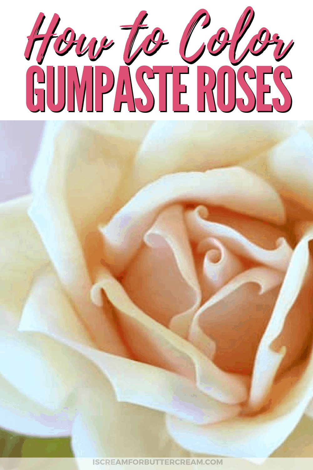 How to Color a large gumpaste rose new pin graphic 2