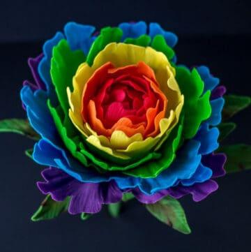 rainbow gumpaste peony featured image