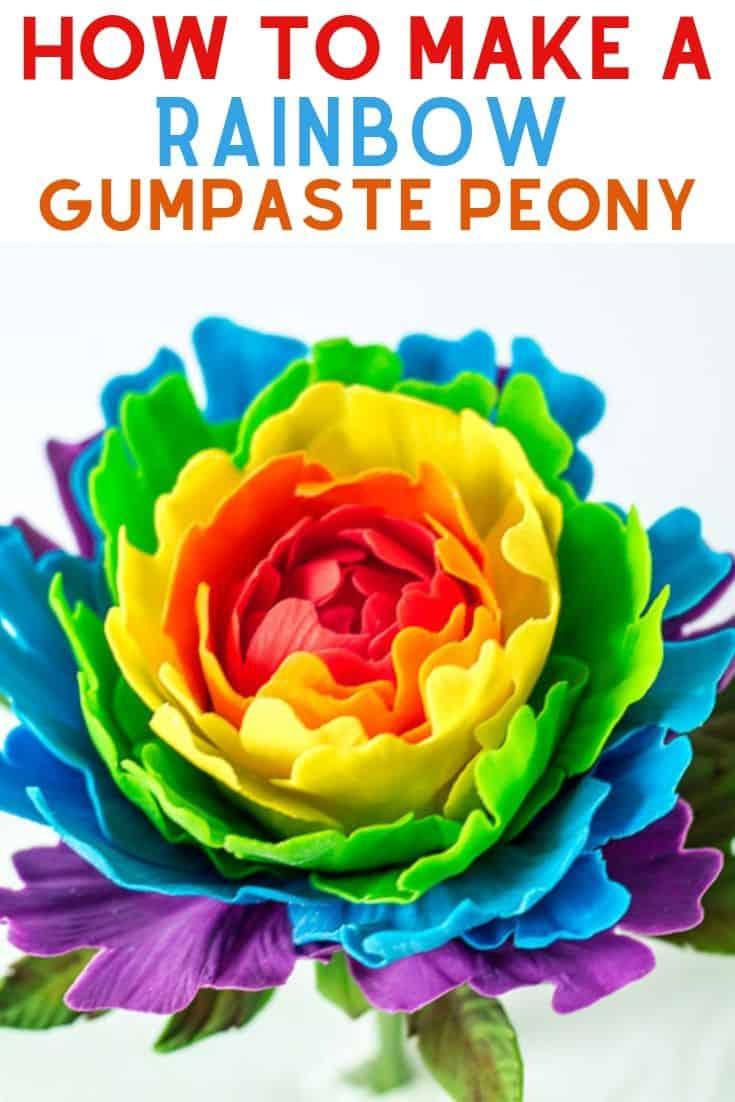 rainbow gumpaste peony pin graphic