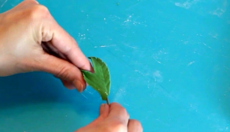 Shaping the gumpaste peony leaf