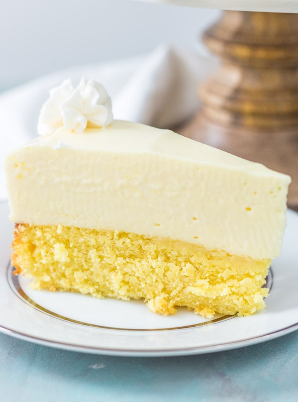 Close up of cake bottom lemon cheesecake
