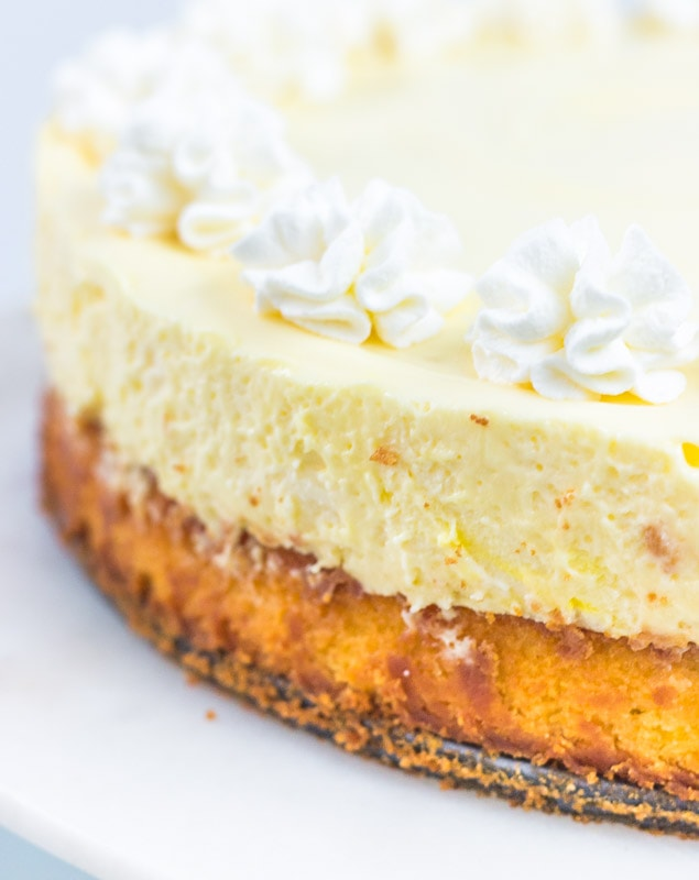 Side view of cake bottom lemon cheesecake