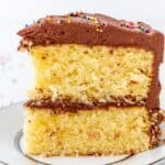 Classic Yellow Cake with Fudge Frosting