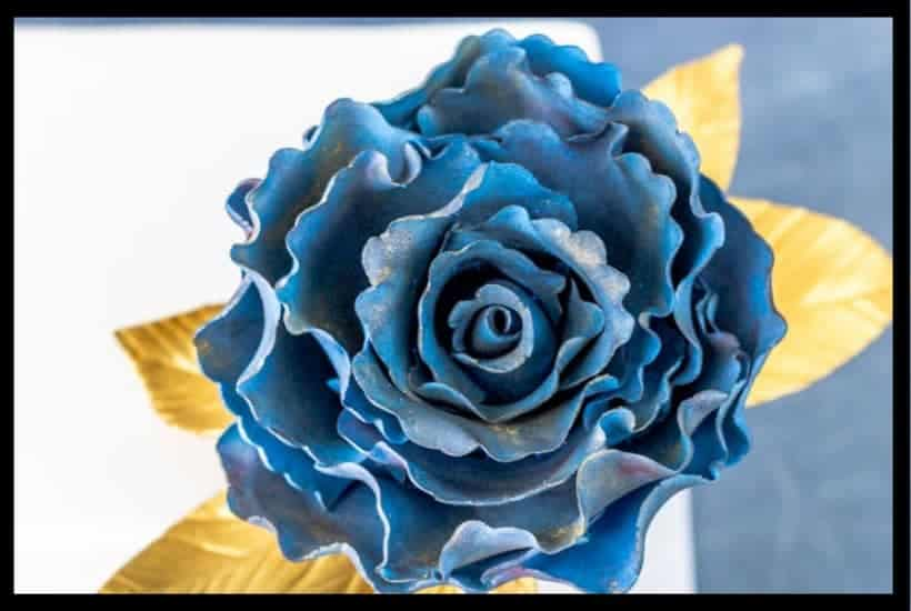 Large Gumpaste Rose Featured Image