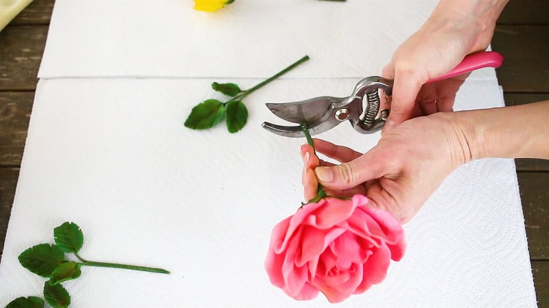 snipping off the end of the gumpaste rose