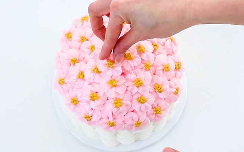 adding apple blossom flowers to the top of cake
