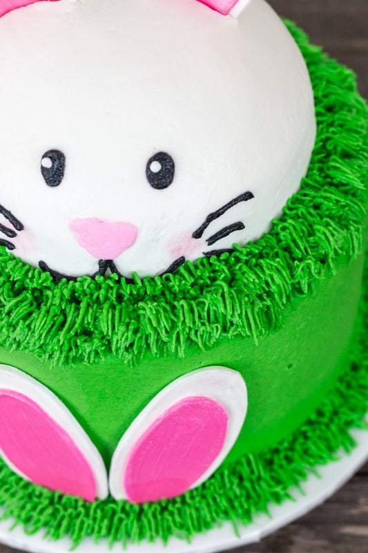 Surprising Bunny Ears Cake With Template I Scream For Buttercream Personalised Birthday Cards Paralily Jamesorg