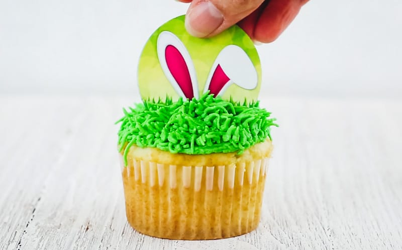 add in cupcake topper to cupcakes