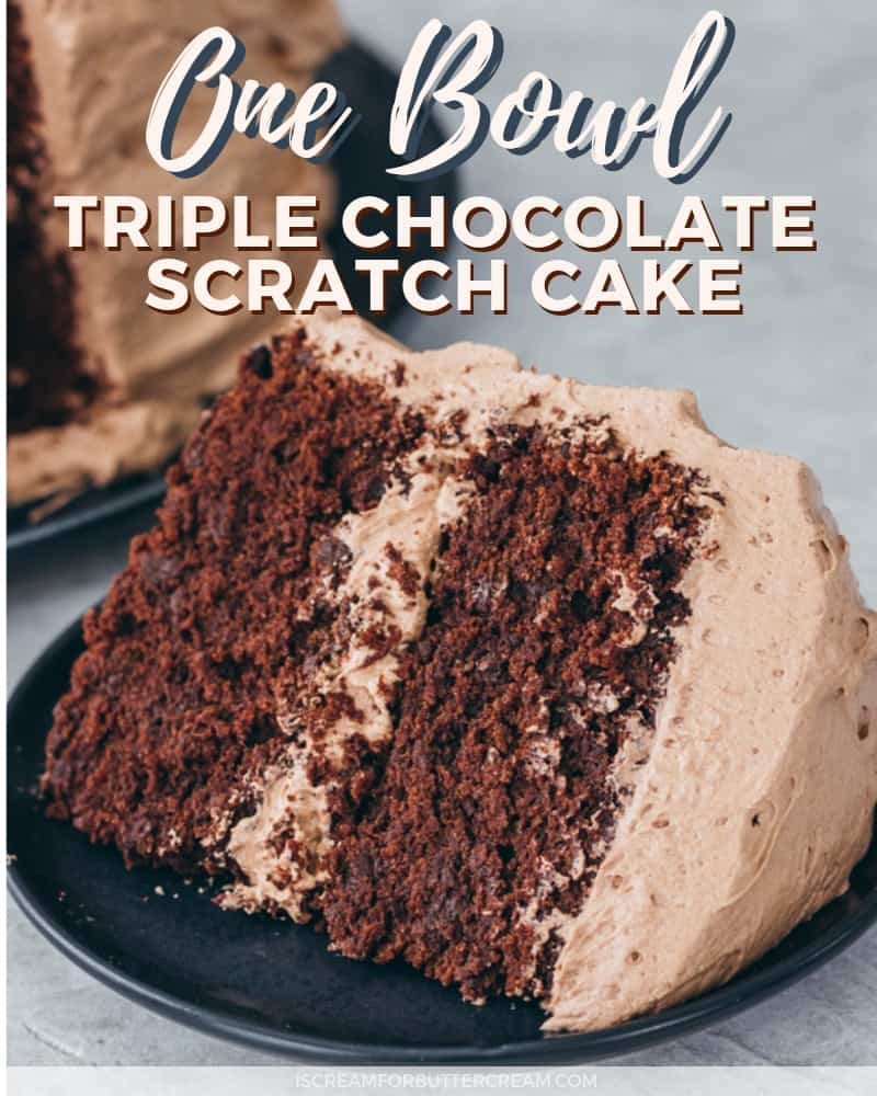 One Bowl Triple Chocolate Cake Blog Title Image