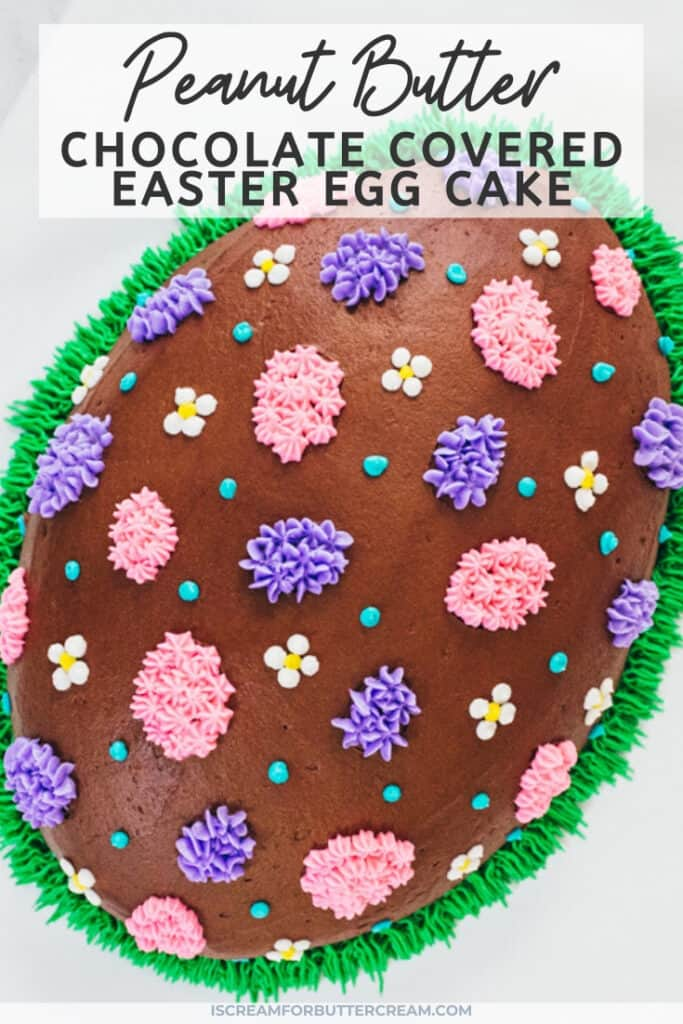peanut butter chocolate covered easter cake pin graphic 1