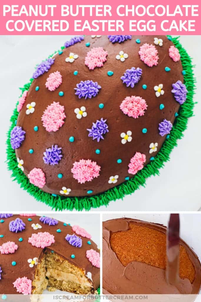 Chocolate Covered Peanut Butter Easter Egg Cake pin graphic