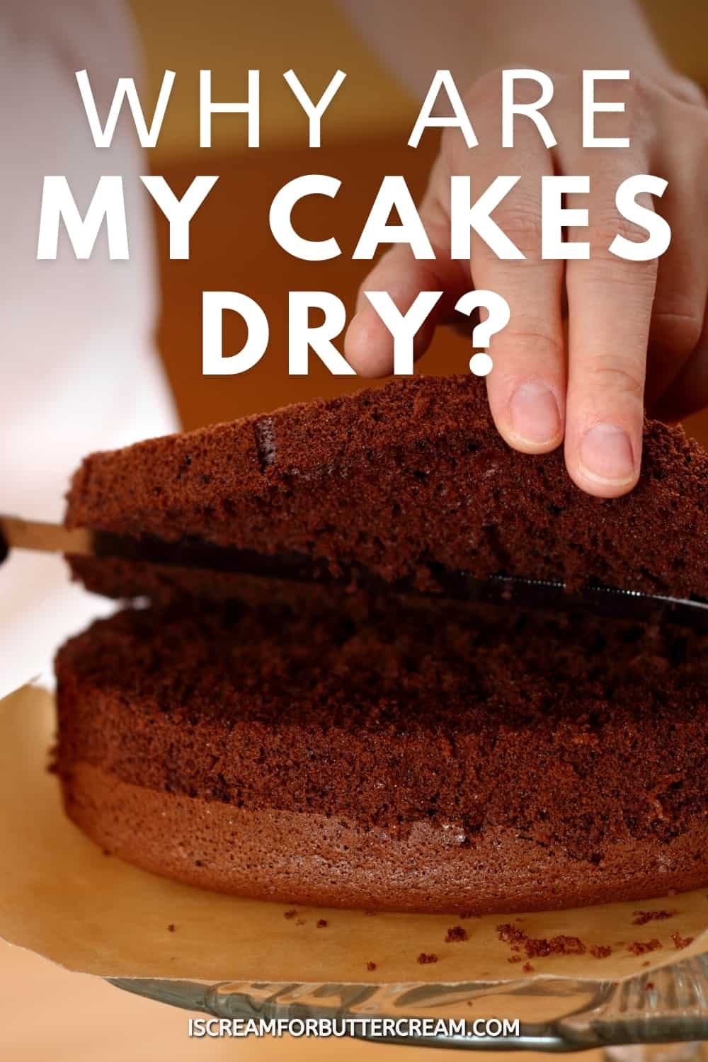 why are my cakes dry title pin graphic