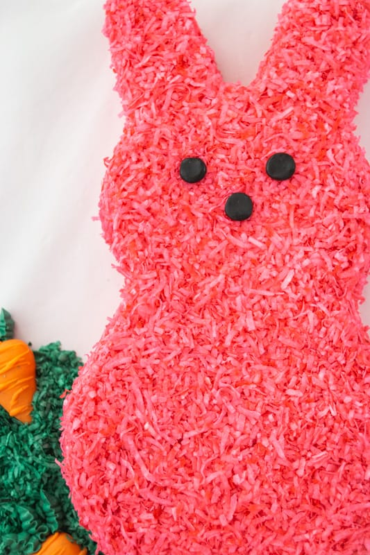 close up of coconut easter bunny cake